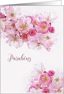 Happy Birthday in Portuguese, Parabéns, Blossoms card