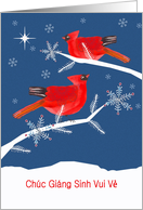 Merry Christmas in Vietnamese, Red Cardinal Birds, Snowflakes card