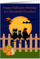 Birthday on Halloween to Grandson Card with Three Black Cats card