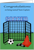 Congratulations on being named team captain, soccer, ball with net card