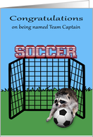 Congratulations on being named team captain, soccer, raccoon card