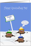 Groundhog Day, general, cute groundhogs wearing winter hats, snow card