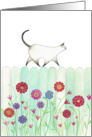Cat Walking on a Turquoise Picket Fence with Flowers card