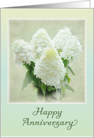 Happy Anniversary - Hydrangea flowers card