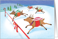 Cute Reindeer Racing for the Christmas Finish Line card