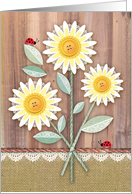 Rustic Daisy Lady Bugs Happy Mother's Day For Mom From All Children card