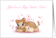 You're a Big Sister Now, Congratulations from Grandparents- Two Kittens card