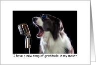 Thank You Song of Gratitude Singing Dog Music card