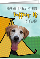 Ruffing It At Camp, Cute Dog in Tent card