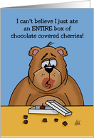 Blank Note Card With Bear Eating Box Of Chocolate Covered Cherries card
