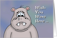 Miss You Card With Cartoon Hippo Wish You Were Here card