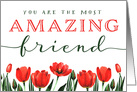 Friend Birthday, You Are the Most AMAZING Friend card