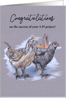 Congratulations on your 4H Project Flock of Chickens Pastel card