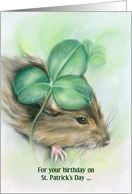 Birthday on St. Patrick's Day Hamster and Shamrock Pastel card