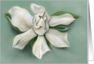 Gardenia White Flower Pastel Artwork Any Occasion Blank card