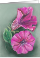 Magenta Pink Petunia Flowers Pastel Art Any Occasion Blank card