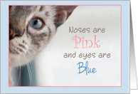 Siamese Cat Peeks around corner with Pink Nose and Blue Eyes Birthday card