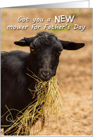 Funny New Mower for Father's Day Goat Eating Hay card