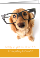 Good Luck with Test You Worked Doggone Hard card
