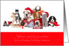 Happy Holidays from Veterinarian Warm and Fuzzy Wishes card