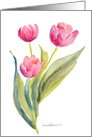 A Bouquet of Pink Tulips for your Birthday card