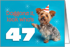 Happy 47th Birthday Yorkie in a Party Hat Humor card