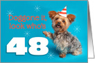 Happy 48th Birthday Yorkie in a Party Hat Humor card