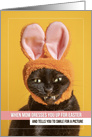 Happy Easter For Anyone Funny Cat Smiling In Bunny Ears Humor card