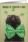 Happy St. Patrick's For Anyone Day Cat in Bow Tie Looking Up Humor card