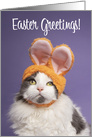 Happy Easter For Anyone Cute Cat in Bunny Ears Humor card