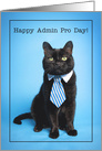 Happy Admin Pro Day Cute Cat in Tie Humor card