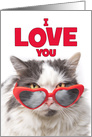 I Love You Romance Cute Cat in Heart Suglasses Humor card