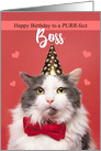 Happy Birthday Boss Cute Cat in Party Hat card