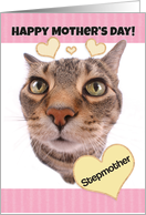 Happy Mother's Day Stepmother Cute Cat card