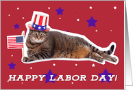 Happy Labor Day Patriotic Kitty Cat Humor card