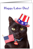 Happy Labor Day Patriotic Cat Humor card