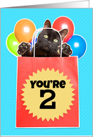 Happy 2nd Birthday Cat's Out of the Bag Humor card