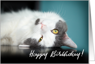 Happy Birthday Adorable Kitty Cat card