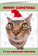 Merry Christmas Nephew Funny Cat in Santa Hat Humor card