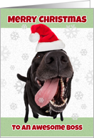 Merry Christmas Boss Funny Dog in Santa Hat Humor card