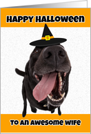 Happy Halloween Wife Funny Dog in Witch Hat Humor card