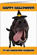 Happy Halloween Husband Funny Dog in Witch Hat Humor card