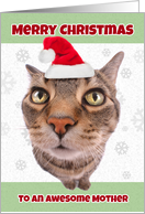 Merry Christmas Mother Cat in Santa Hat Humor card