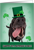Happy St. Patrick's Day For Anyone Dog Humor card