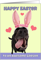 Happy Easter Godson Name Dog in Bunny Ears Humor card