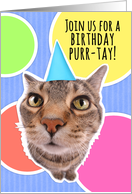 Cute Cat Birthday PURR-tay (party) Invitation Humor card