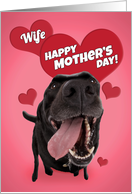 Happy Mother's Day Wife Cute Black Lab with Hearts Humor card