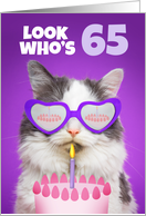 Happy Birthday 65 Year Old Cute Cat WIth Cake Humor card