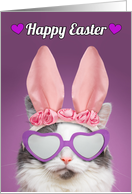 Happy Easter For Anyone Cat in Bunny Ears Humor card