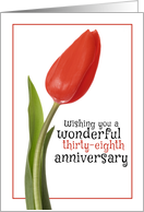 Happy 38th Anniversary Beautiful Red Tulip card